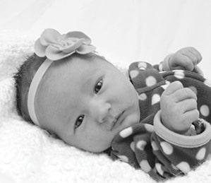 schmale baby announcement 2-11-15.jpg
