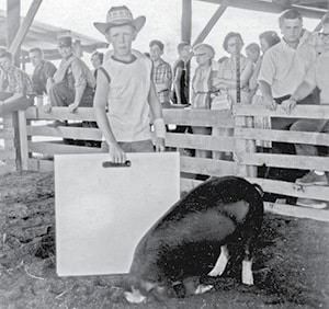 classic photo this little piggy went to market BW.jpg