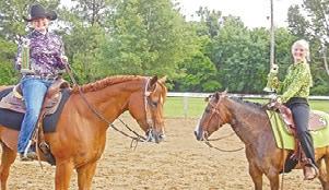 4H horses 1575 C.jpg