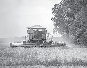 070115 Wheat Harvest BW.jpg