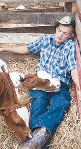 071515 Kids Day Resting With Calves-8432 C.jpg