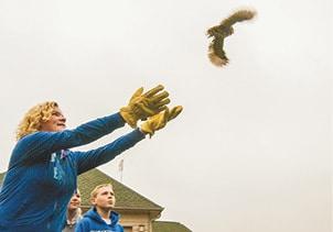 120215 Owls Fly C.jpg
