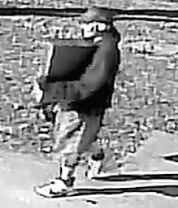 121615 Burglars 4 BW.jpg