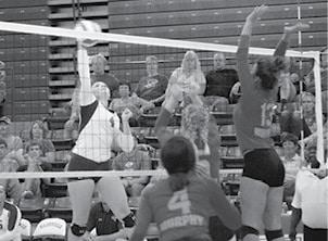 Volleyball 1 BW.jpg