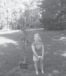 Oakdale Tree BW.jpg