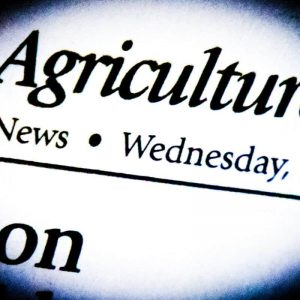 Agriculture – Page 14 – The Nashville News