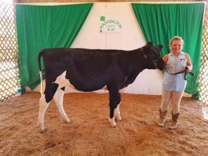Dairy 4