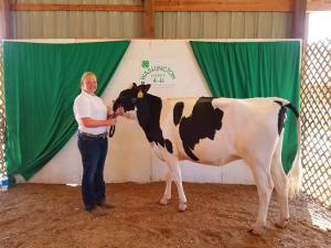 Dairy 5