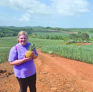 Pineapple Farm C